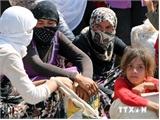 Liên hợp quốc triển khai cầu không vận nhân đạo tới Iraq