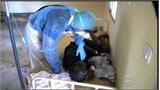 Thêm một quốc gia Tây Phi ghi nhận ca mắc Ebola
