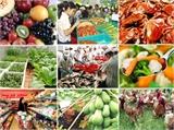 Xử lý 83 trường hợp vi phạm về an toàn thực phẩm