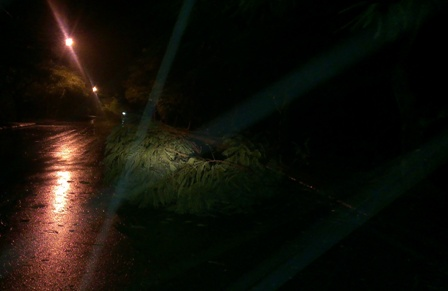 Bão tiến gần bờ, Quảng Ninh - Hải Phòng mưa to
