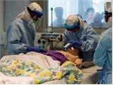 Hội đồng Bảo an LHQ: Dịch bệnh Ebola đe dọa hòa bình thế giới