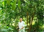 Cả làng học ông Cự trồng rừng