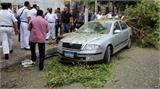 Nổ bom gần Bộ ngoại giao Ai Cập, 4 người chết
