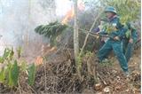 Sơn Động: Diễn tập phòng cháy, chữa cháy rừng năm 2014