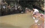 Sớm làm rõ nguyên nhân  gây ô nhiễm nước hồ Suối Mỡ