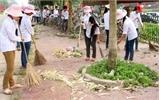 """Việt Yên: 100 ĐVTN tham gia chương trình """"Ngày chủ Nhật xanh"""""""