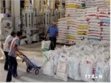 Xuất khẩu nông, lâm, thủy sản 11 tháng đạt trên 28 tỷ USD