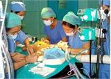 Tỷ lệ sống sau ghép tạng ở Việt Nam cao hơn thế giới