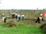 Xã hội hóa thu gom, xử lý rác thải nông thôn