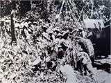 'Quân đội Việt Nam, anh hùng, truyền thống vẻ vang'