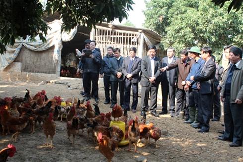 Bộ trưởng Bộ Nông nghiệp và PTNT Cao Đức Phát làm việc tại Bắc Giang