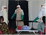 Số người nhiễm Ebola ở Tây Phi tăng trên 19.000