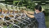 Những dự án Việt Nam hiếm hoi đầu tư sang Trung Quốc