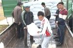 Hộ nghèo toàn tỉnh Bắc Giang còn hơn 8,8%