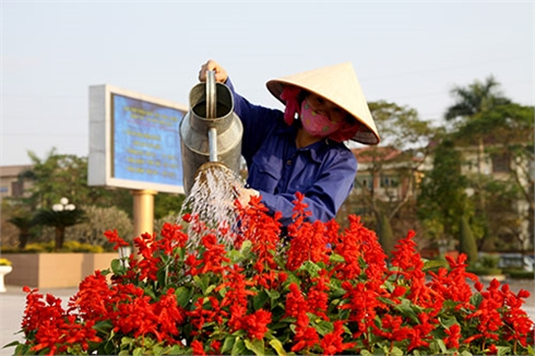 Thành phố Bắc Giang rực rỡ cờ hoa chào đón lên đô thị loại II