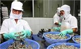 Kim ngạch xuất khẩu nông, lâm, thủy sản tháng Một giảm gần 14%