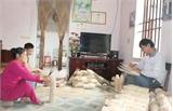 Đan rọ tôm ở Song Khê: Nghề phụ, thu nhập chính