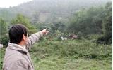 Tranh chấp đất lâm nghiệp ở xã Vân Sơn (Sơn Động): Ông Vi Ngọc Hồi có quyền sử dụng 1,9 ha đất