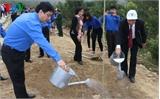 Phát động trồng cây đầu xuân tại khu mộ Đại tướng Võ Nguyên Giáp