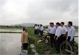 Phó Chủ tịch UBND tỉnh Dương Văn Thái kiểm tra tình hình sản xuất tại huyện Tân Yên