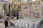 Xuất khẩu gạo quý 1 năm nay ở mức thấp nhất từ năm 2009