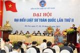 'Đội ngũ luật sư Việt Nam không có thành viên nào chạy án'