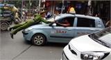 Hà Nội: Cảnh sát 'đu mình' trên nắp capo xe taxi tại phố Bà Triệu