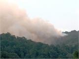 Bắc Giang: Cháy rừng, một người dân thiệt mạng