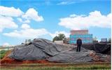 Khuất tất trong mua bán đất  tại xã Chu Điện