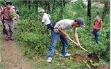 Nắng, nóng ảnh hưởng đến tiến độ trồng rừng