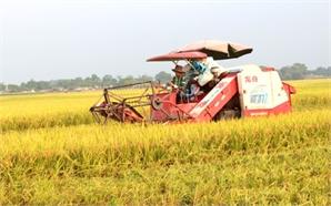 """Chuyển đổi HTX nông nghiệp Bắc Giang: Không để """"bình mới, rượu cũ"""""""