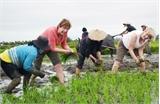 """Du lịch nông nghiệp: """"Ngủ quên"""" trên tiềm năng"""