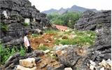 Phát hiện nhiều dấu tích và hiện vật cổ tại núi Xuân Đài