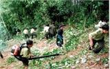 Trường Quân sự (Quân đoàn 2): Phối hợp làm 40 km đường băng cản lửa