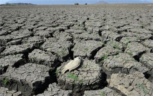El Nino, biến đổi khí hậu khiến nửa Việt Nam thành chảo lửa
