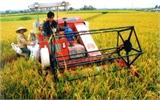 1% doanh nghiệp đầu tư vào nông nghiệp