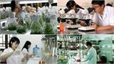 Đặt hàng 6 đề tài khoa học và công nghệ cấp quốc gia