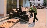 Vi phạm lâm luật ở Bắc Giang vẫn diễn biến phức tạp