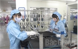 Bắc Giang: Kim ngạch xuất khẩu 7 tháng tăng 19,2%