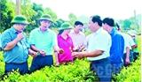 Đoàn kết, đổi mới, xây dựng huyện Yên Thế vững mạnh toàn diện