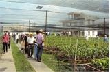 Dạy nghề trồng trọt cho người khuyết tật