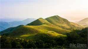 Nắng Đồng Cao