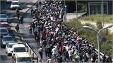 Cả nghìn người di cư quyết đi bộ
