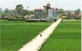 Bắc Giang: Thưởng 1,4 tỷ đồng cho 7 xã đạt chuẩn nông thôn mới