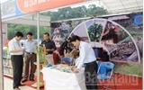 Phát miễn phí hơn 1 nghìn ấn phẩm du lịch Bắc Giang
