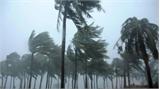 19 người thiệt mạng vì bão tại Trung Quốc