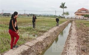 Tăng hiệu quả và sức cạnh tranh cho nông nghiệp Bắc Giang: Nhận diện điểm nghẽn (Kỳ II)