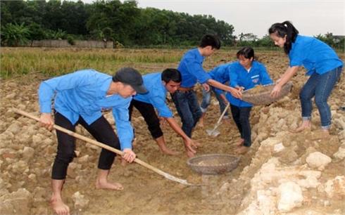 Xây dựng nông thôn mới: Sức trẻ trên những công trình, phần việc