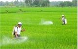 Ngăn chặn vi phạm trong sản xuất, kinh doanh thuốc bảo vệ thực vật