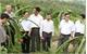 Hội Nông dân huyện Yên Dũng: Hội viên tích cực, phong trào mạnh